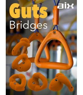 AIX Guts Bridges