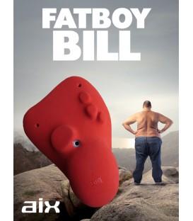 AIX FatBoy Bill PU