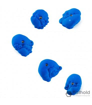 Flathold Organs XL M 018 02