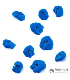 Flathold Organs L/E 018.03