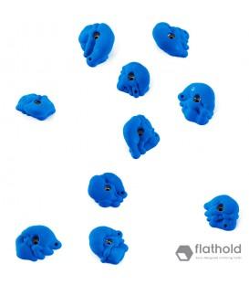 Flathold 018.04 Organs M/E