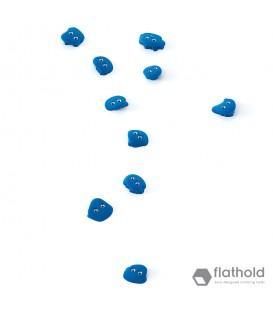 Flathold Frog XS/H 010.06