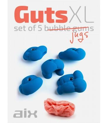 AIX Guts XL