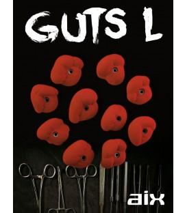 AIX Guts L