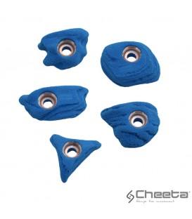 Cheeta Alba stone S1 006.01 S-H