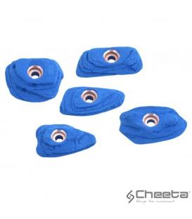 Cheeta Alba stone S2 006.01 S-H