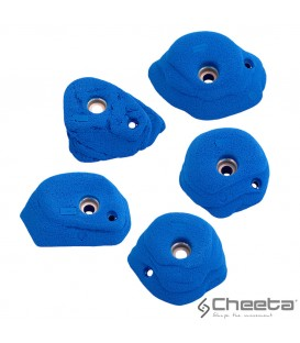 Cheeta Alba stone M2 006.02 M-M