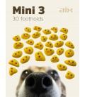 AIX Mini 3 PU