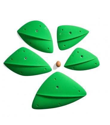 Morpho Leaf Disorder