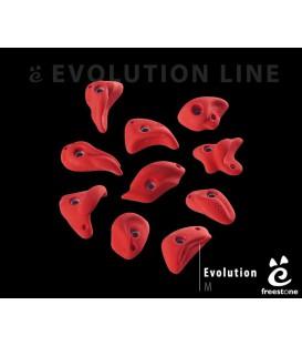 Evolution M